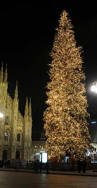 Albero di Natale - Milano, piazza Duomo