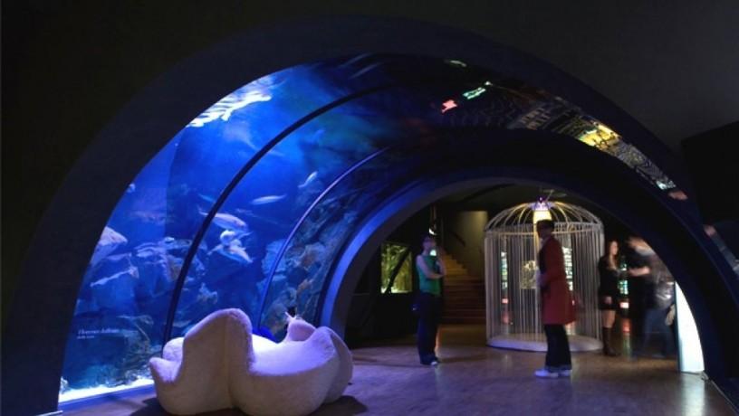 acquario-civico