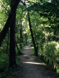 Un sentiero del Parco delle Cave